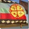 bandera_mapuche_3_5B1_5D-1_bigger